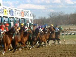 Horse Racing at Laurel Park