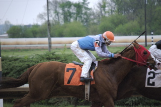 horse race 2009