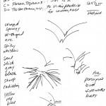 Teresa's sketch